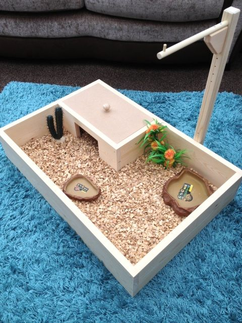 30 x 20 starter table pet and tortoise world a pinterest tortoise tables pet and tortoise world solutioingenieria Choice Image