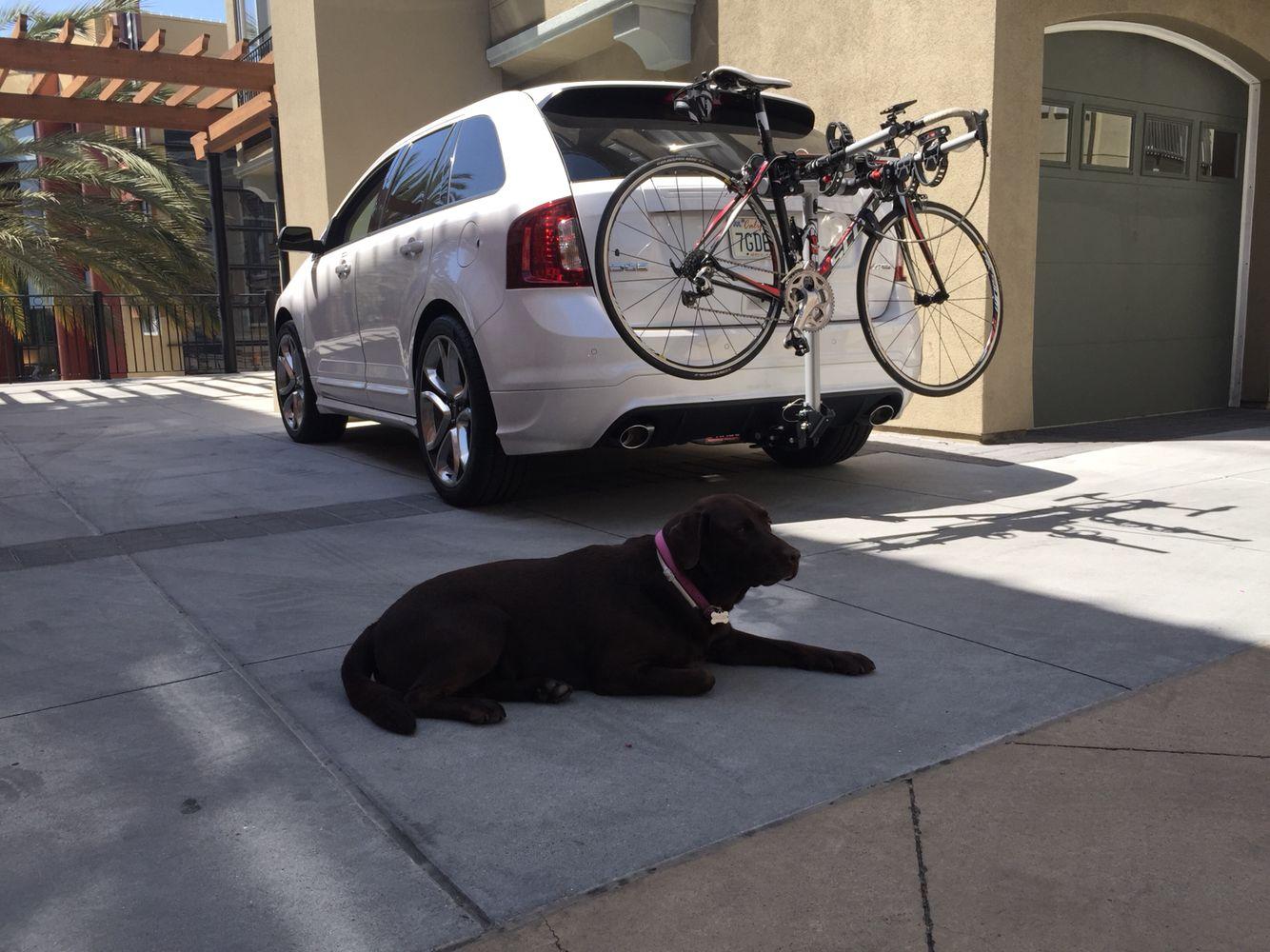 Trailer Hitch Bike Mount Rola