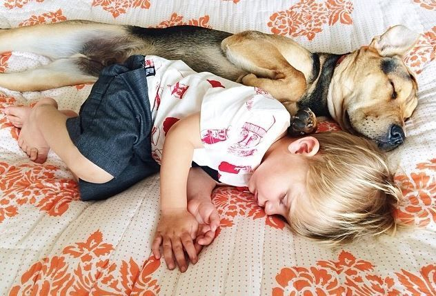 Beau e Theo, bambino e cane sono cresciuti ma dormono ancora insieme (FOTO)