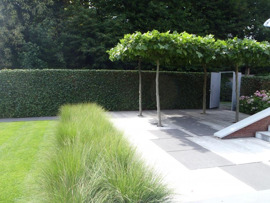 Afbeeldingsresultaat voor minimalistische tuin landscape