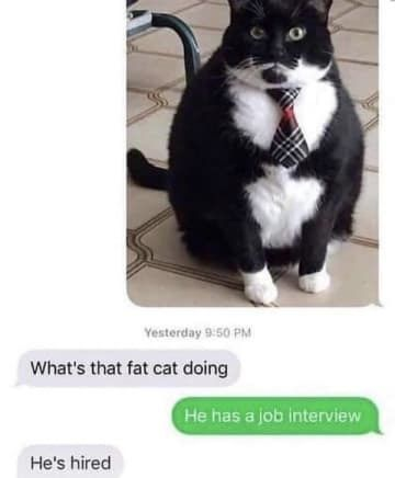 Best Funny Cute 100 Texts That Will Make You Laugh Way, Way Harder Than You Should 100 Texts That Will Make You Laugh Way, Way Harder Than You Should 1
