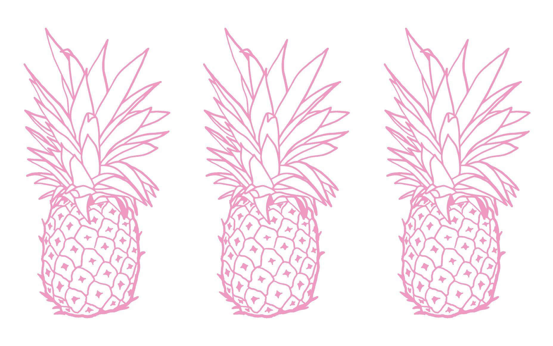 Pink white pineapples desktop Wallpaper background Color