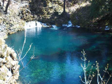 Blue Poll Mckenzie River Hikes Swim Camp Visit Blue Pool West Coast Road Trip Tamolitch