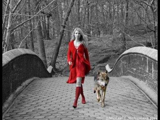 Red Wolf photo by Michael J. McNamara