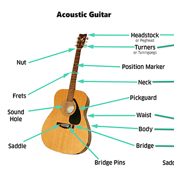 Guitar Anatomy Parts Of A Guitar Lesson 2 Guitar Guitar Lessons Learn Guitar