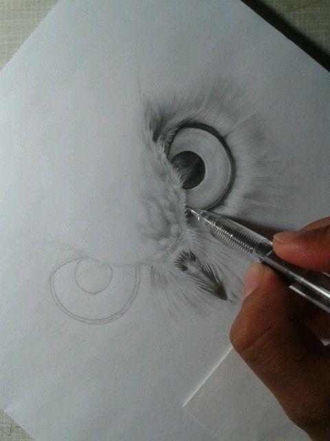 Dibujo ojos de buho a lapiz  Dibujos   Pinterest  Awesome