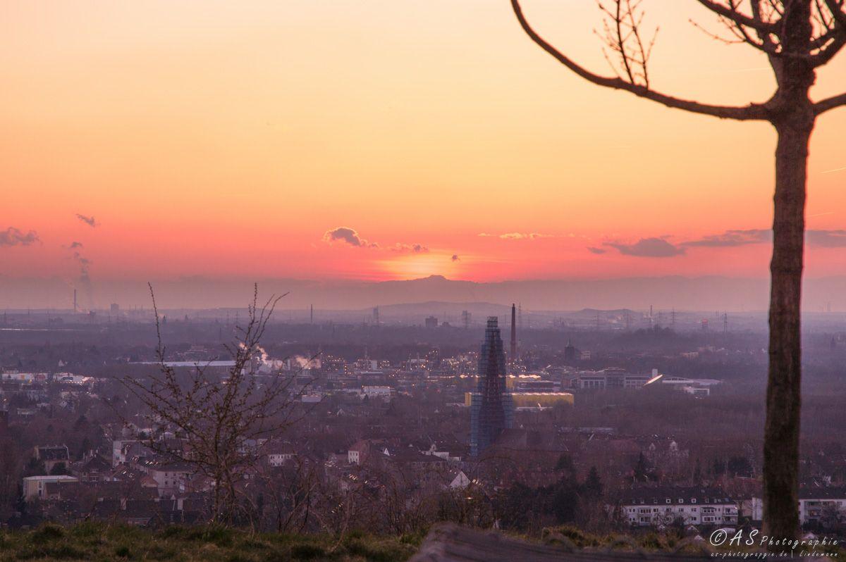 Sonnenuntergang Tippelsberg Bochum Sonnenuntergang Bochum Landschaft