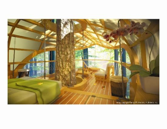 Tree House - Savannah - Reviews of Tree House - TripAdvisor