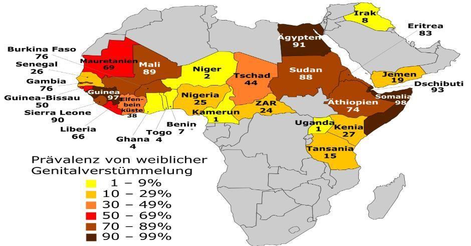 Es Gibt 57 Islamische Lander Ohne Demokratie Dschibuti Kamerun