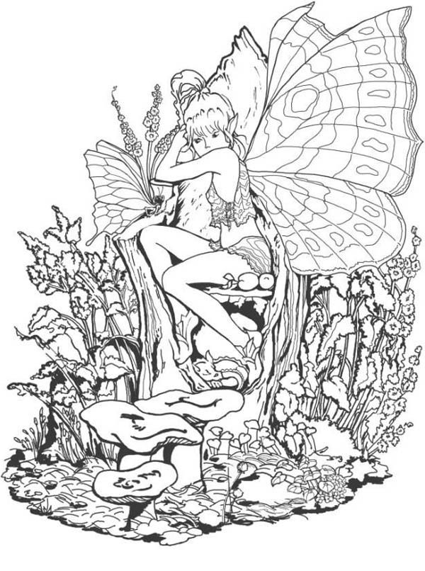 The Forbidden Fantasy Fairy World Coloring Page Adult Coloring