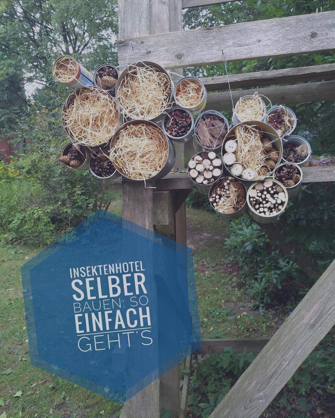 Wir haben auf dem Gemeindefest von St. Petri ein upcycling Insektenhotel gebaut...., #Garten...
