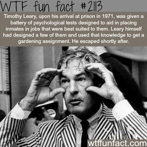 Facts about history, intersting history information WTF Facts ...