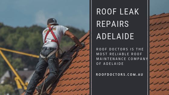 Roof Doctors Provides Ideal Roof Leak Repairs Service In Australia To Fix Roof Leakages Leak Repair Roof Leak Repair Roof Repair Cost