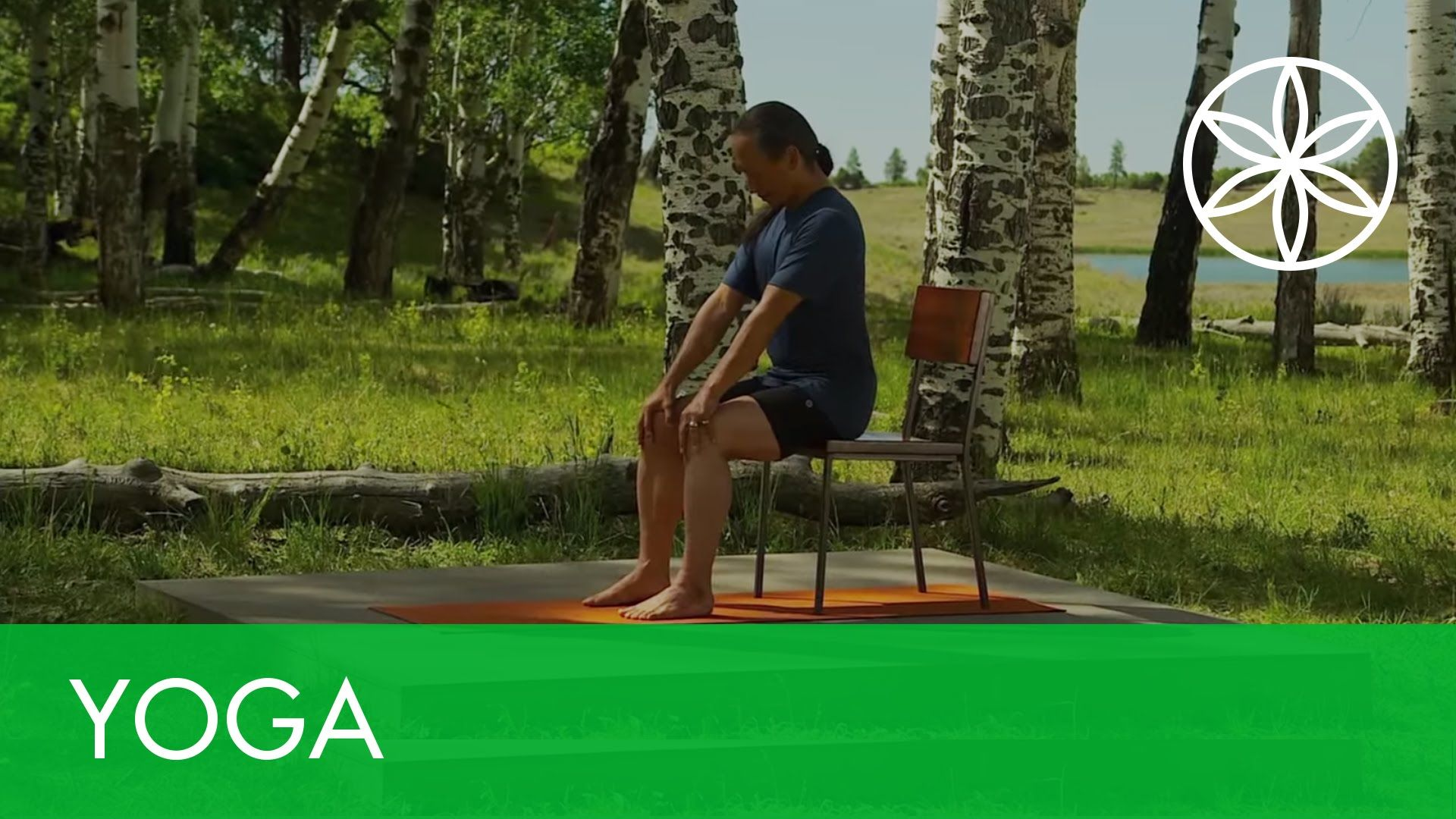 Rodney Yee Yoga for Energy and Stress Relief Chair Yoga