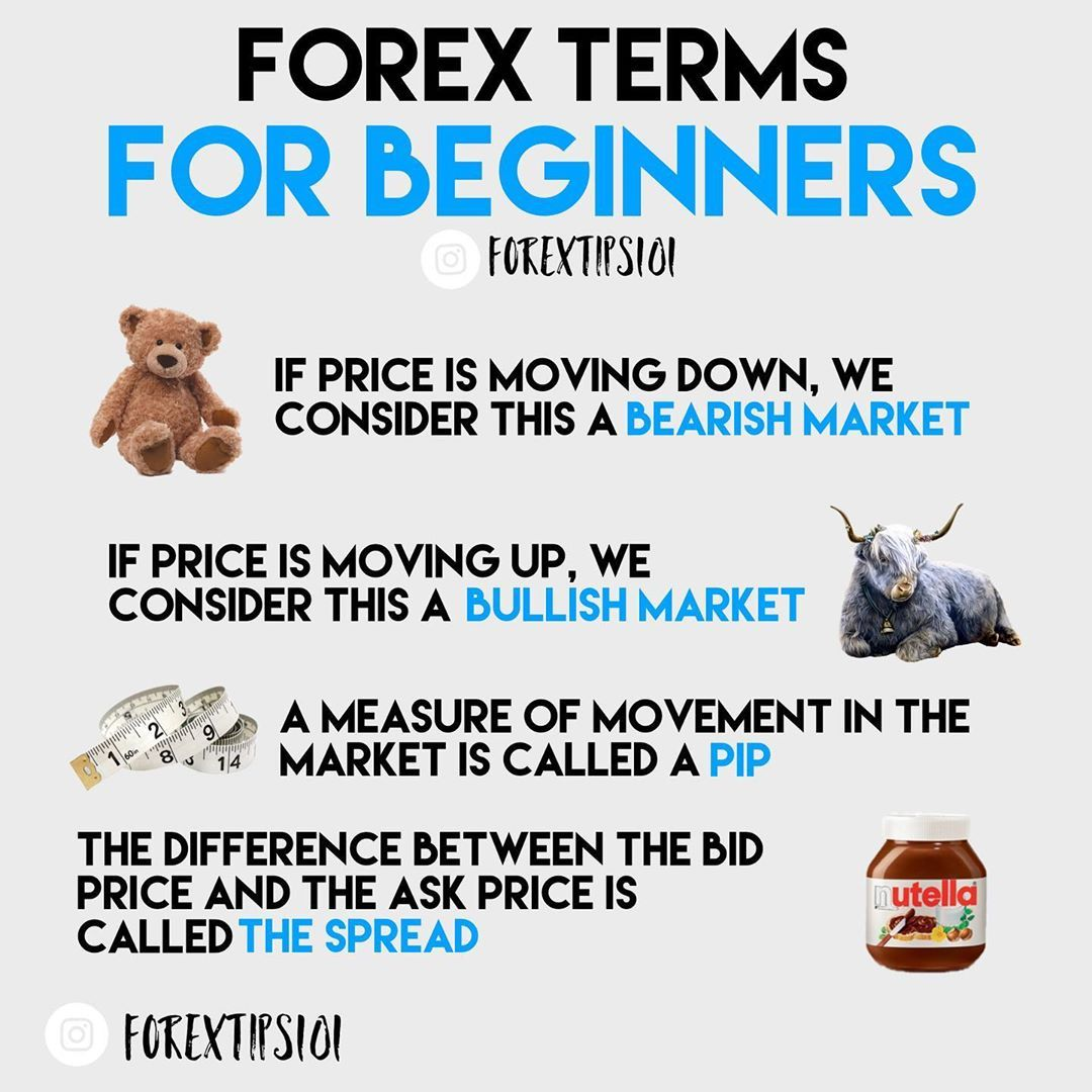 Forex Tips 101 On Instagram What Are Some Other Terms You