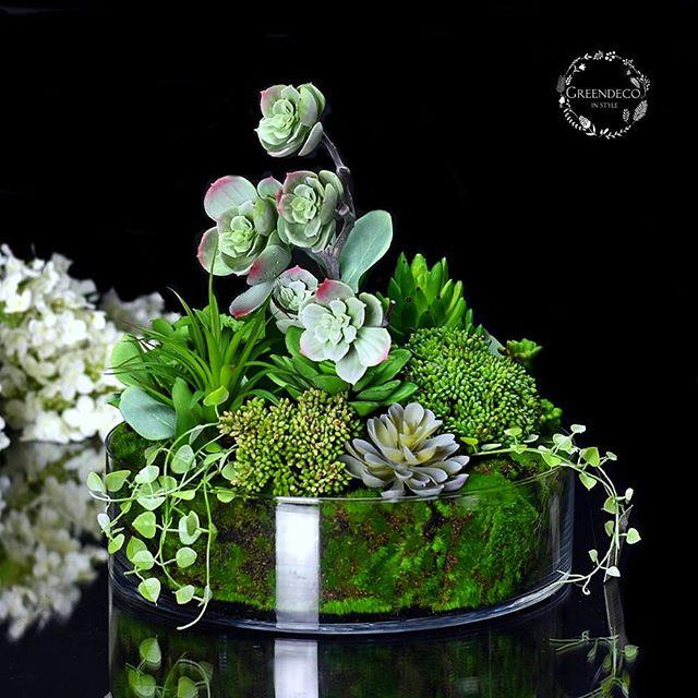 Greendeco Online Shop Na Instagramie Sukulenty W Szkle Zapraszamy Do Sklepu Www Greendeco Org Sukulentywszkle Sukulent Spring De Plants Flowers Deco
