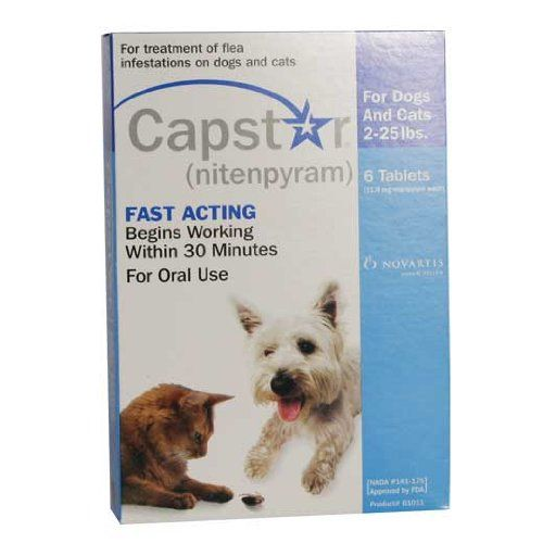 Capstar 60 Ct For Catdog Under 25 Pounds Read More Reviews Of The Product By Visiting The Link On The Image This Is An Affiliate Dogs Dog Cat Dogs Online