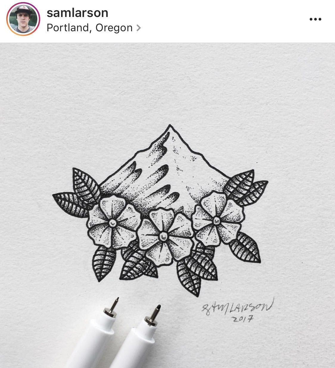Sam larson mountains and flowers drawing design pinterest