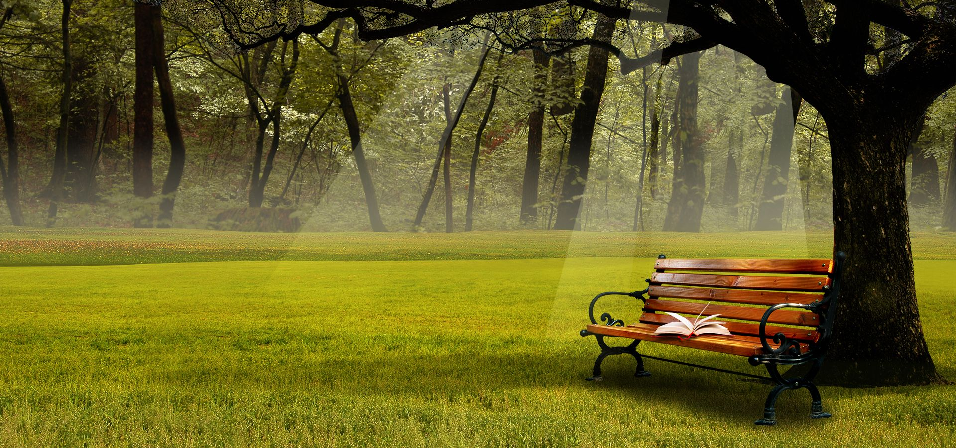 Nature Landscape Background Book Chair Green Spring Poster Banner Landscape Background Landscape Poster Green Chair