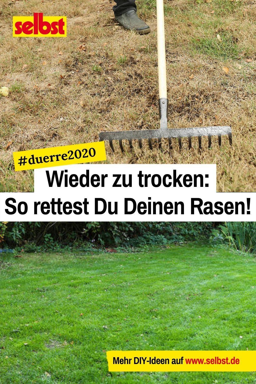 Auch 2020 droht Dein Rasen zu verdörren!