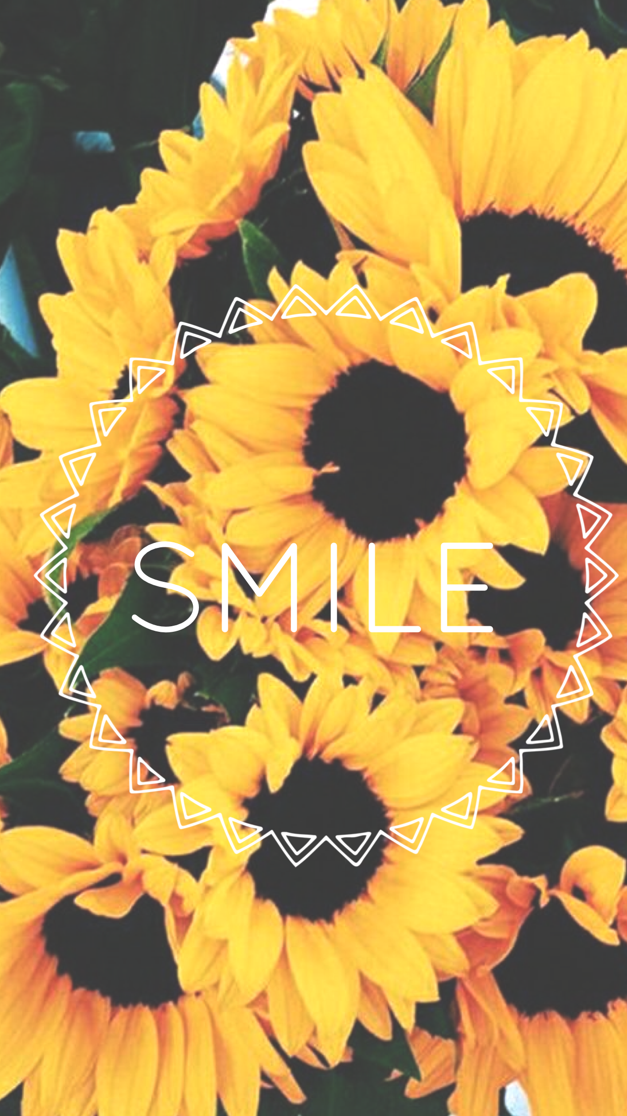 Pin by Keliena Towner on Iphone | Sunflower wallpaper ...