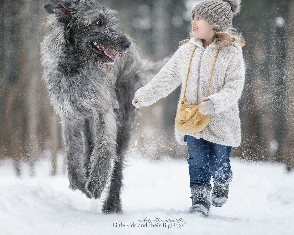 Andy Seliverstoff Little Kids Amp Their Big Dogs