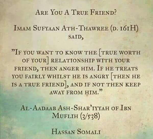 Islamic Quotes For Friendship: Pin By ساجي ️ On Reminders Benefit The Believers ♥️