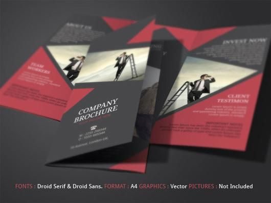tri fold brochure design inspiration google search brochure