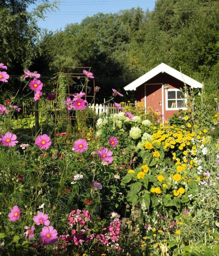 Schöner Wilder Garten