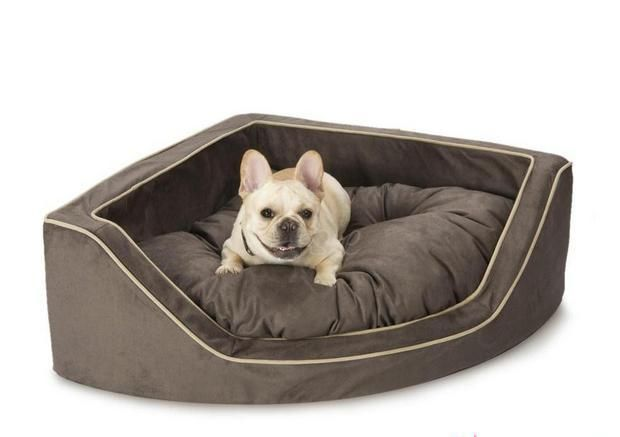 30 Unique And Modern Pet Beds Dog Bed Luxury Cool Dog Beds Pet Beds
