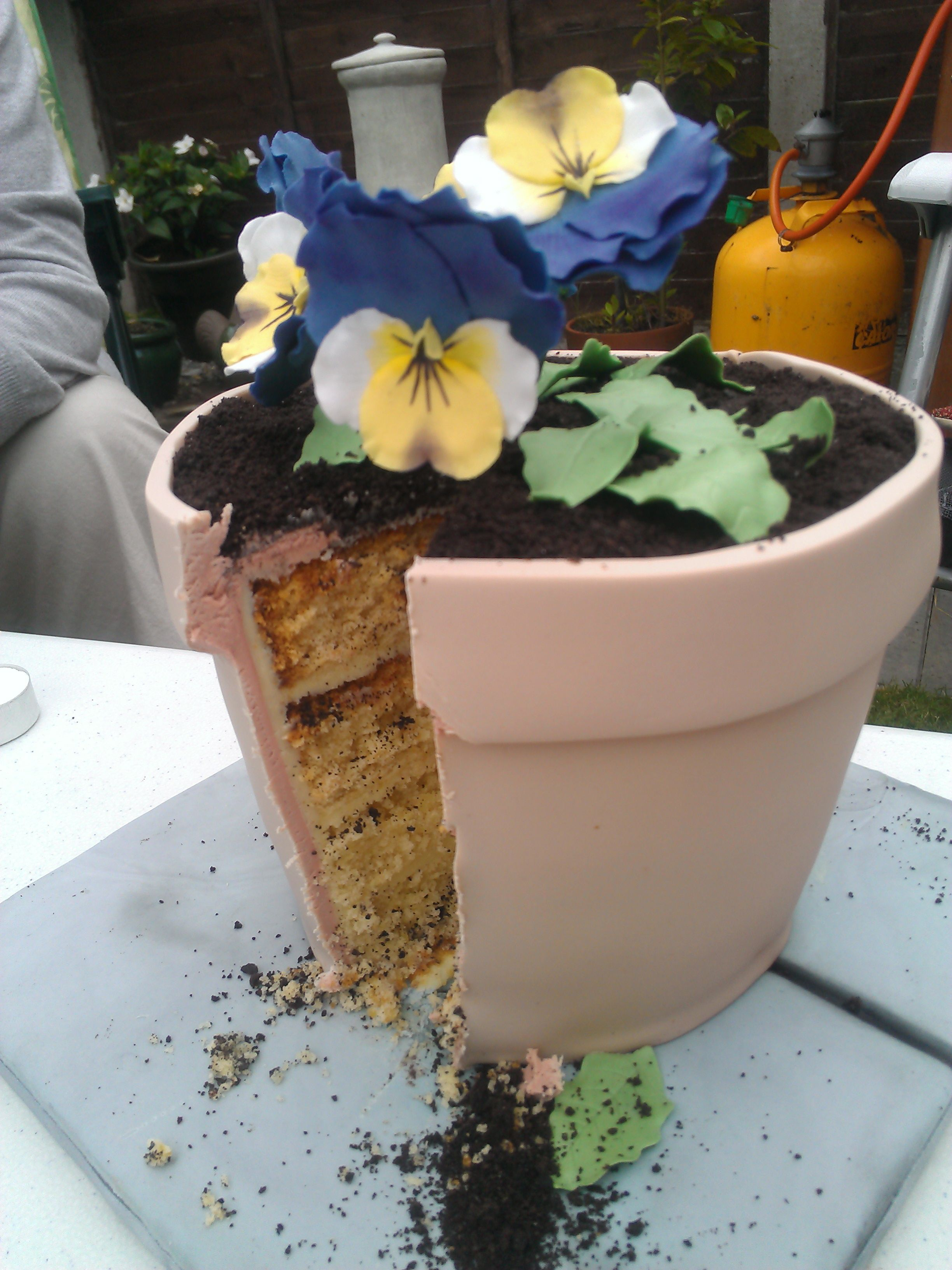 Flower pot cake Pot cakes, Novelty cakes, Cake decorating