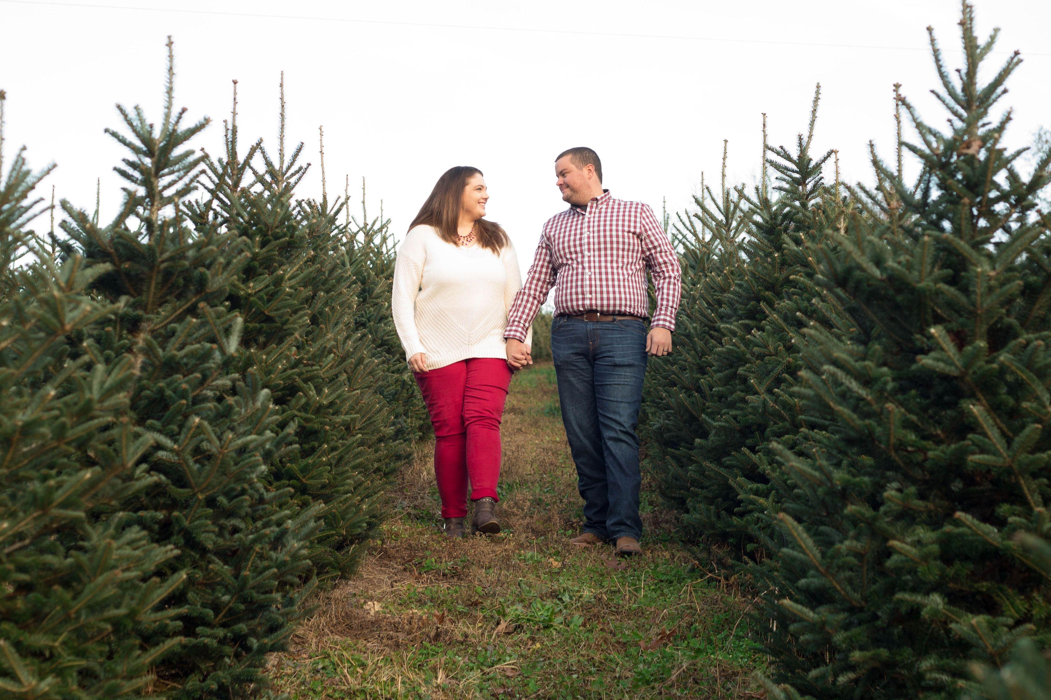 Christmas Card Photos At Sawyer Family Farmstead Christmas Tree Farm Couples Engagement Photos Sawyer