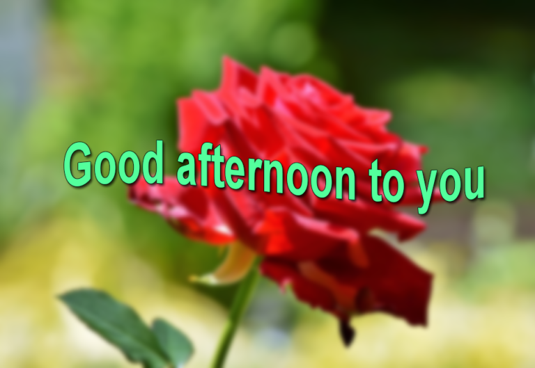 Goodafternoonloveimagesfreedownload Good Afternoon Enchanting Gud Afternoon Image Download