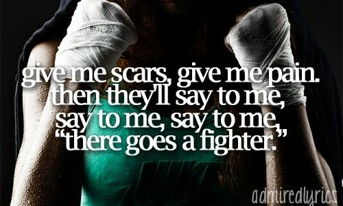 The fighter by gym class heroes lyrics