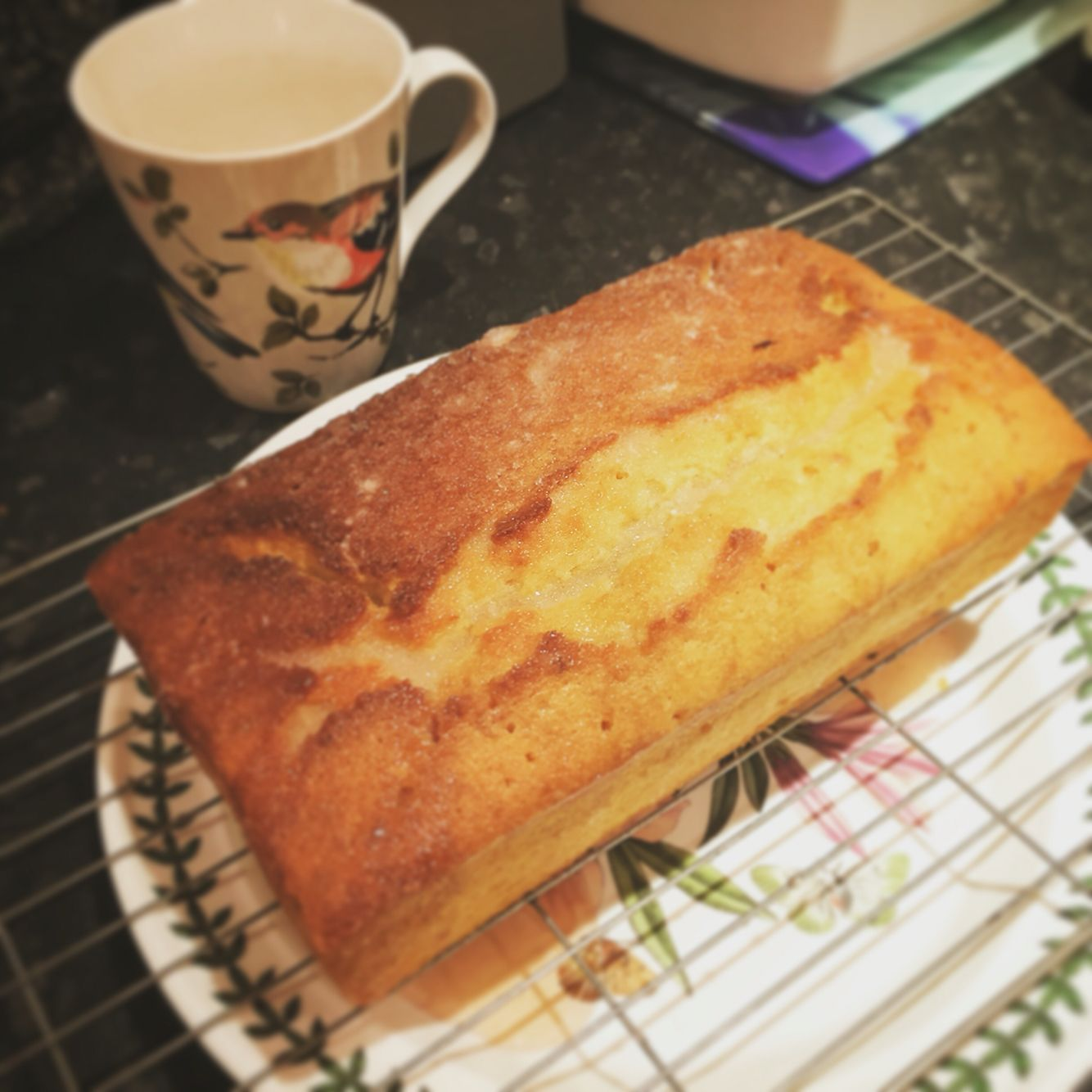 Gin and tonic cake. Basically a lemon drizzle but with gin and slow gin. Delicious.