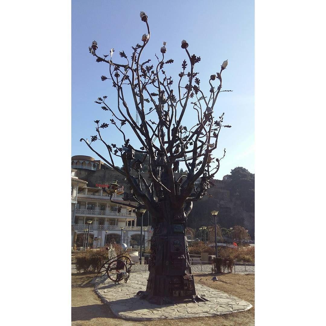 شبكة أجواء فريق أجواء شجرة تم إنشاؤها لتكون ملاذا للطيور في الحديقة الأوربية تبليسي فريق أجواء في جورجيا أطلس ال Instagram Instagram Posts Photo
