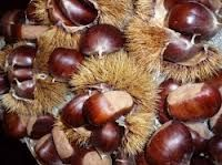 castanhas assadas - Google Search