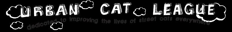 Good description of how to socialize feral cats. Cat