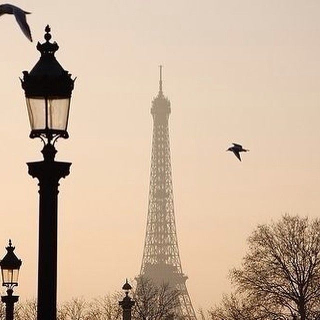 weheartitpikk Who's love Paris ?!
