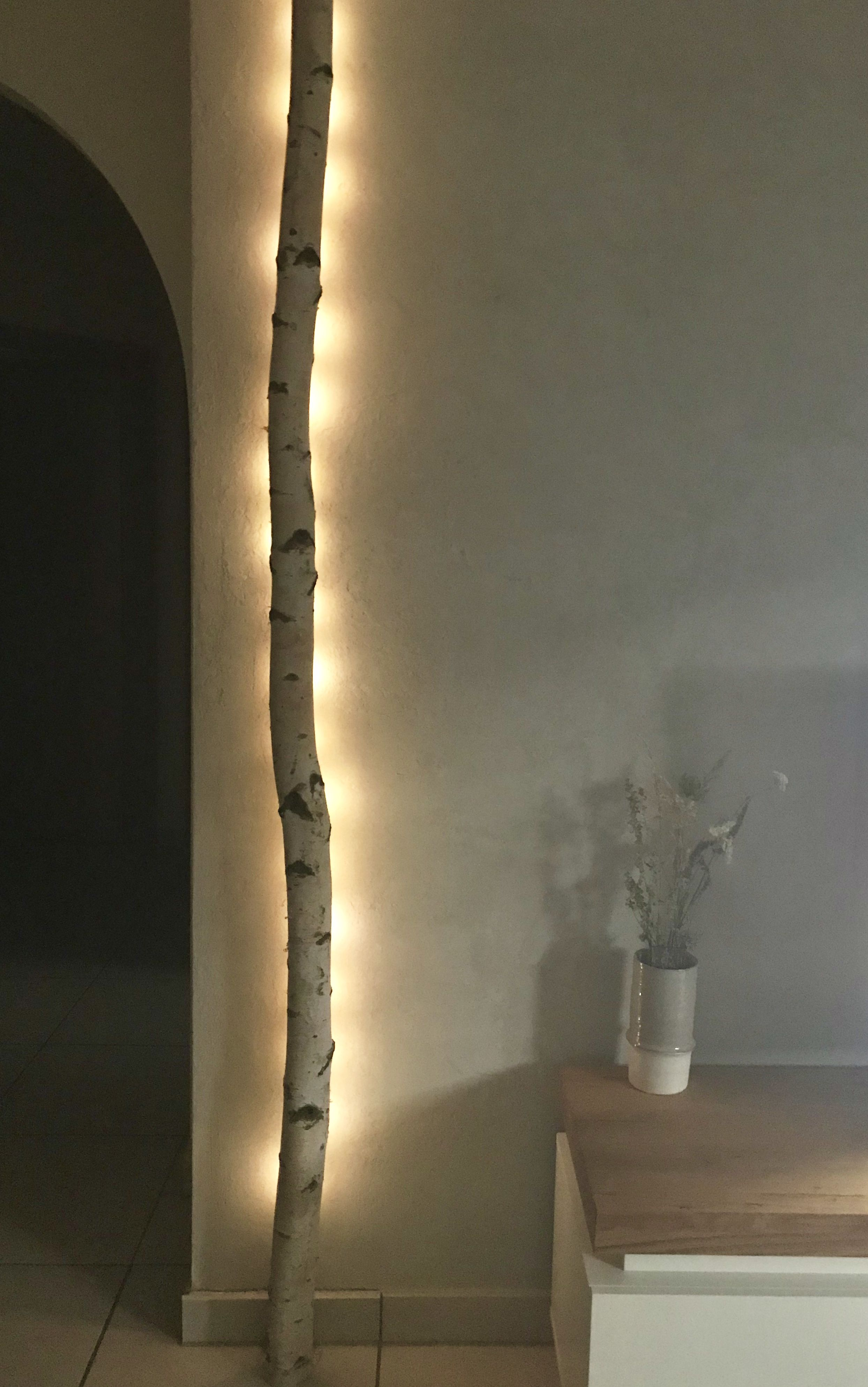 Romantische Hintergrundbeleuchtung Mit Einem Weissen Birkenstamm Von Birkendoc Https Birkendoc De Shop Indirektes Licht Birkenstamm Hintergrundbeleuchtung