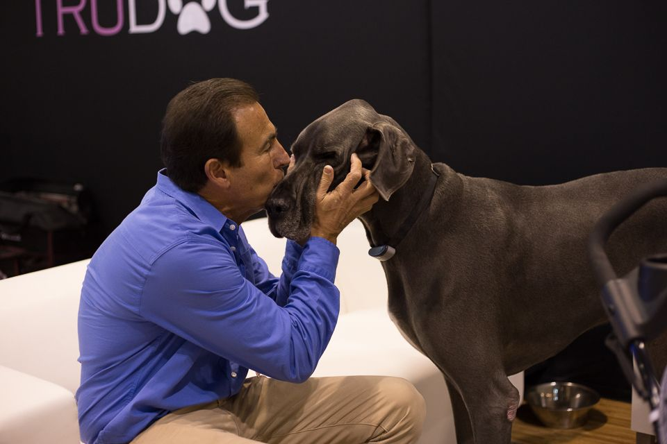 6 Things We Accomplished At Global Pet Expo Dog Food Brands
