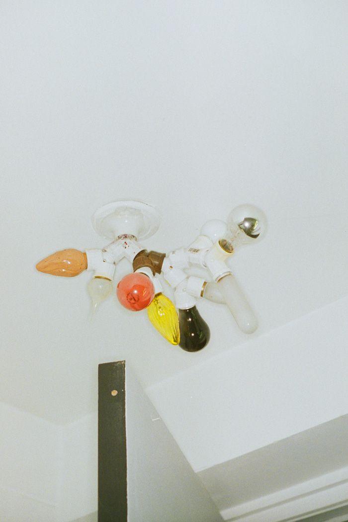 Bulbs, 2013