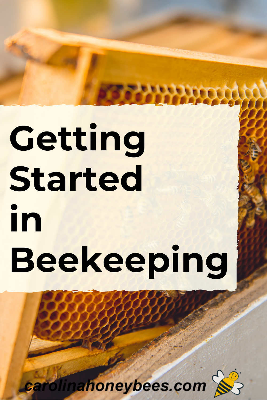 How to Start Beekeeping in Your Backard-Carolina Honeybees ...