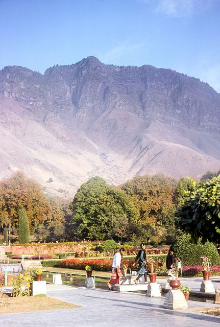 Nishat Bagh or Nishat Garden, Srinagar