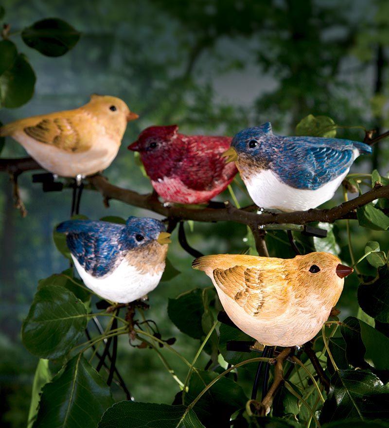 Solar Bird String Lights $24.95 | Clip Birds To Branches Or String Them  Along Your Porch