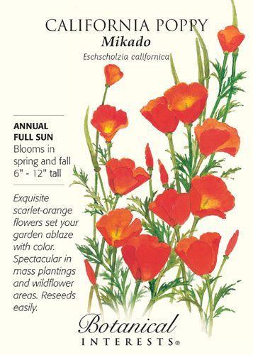 Mikado California Poppy Seeds 1 Gram Perennial California