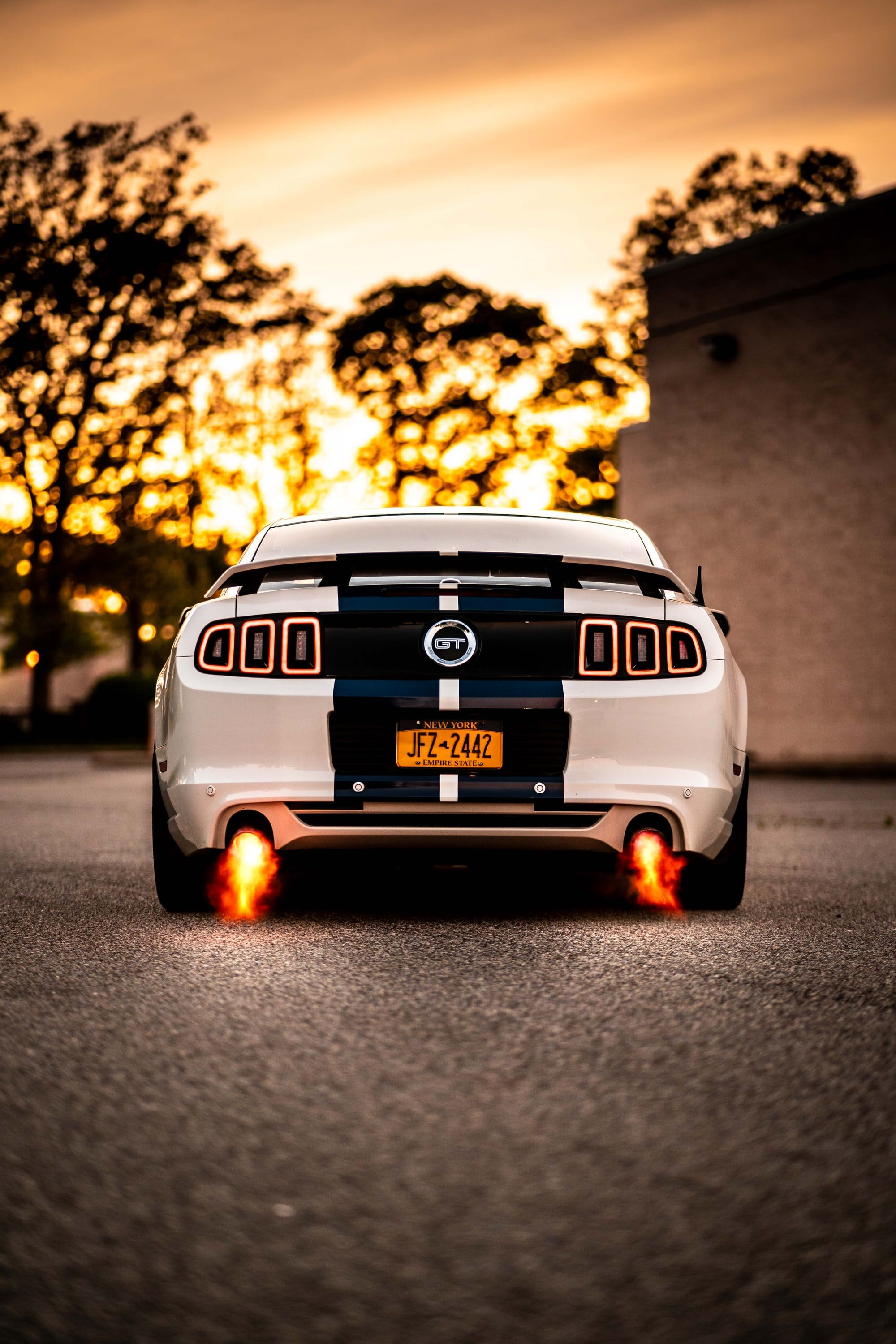 Thanks To Jon Megna For Making This Photo Available Freely On Unsplash Ford Mustang Wallpaper Mustang Wallpaper Ford Mustang Gt