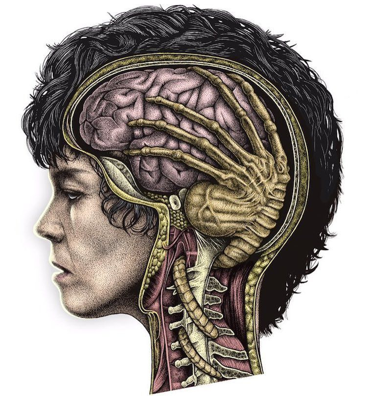 Photo of A Brilliant Color Print of Ellen Ripley's Brain Being Squeezed by an 'Alien' Facehugger