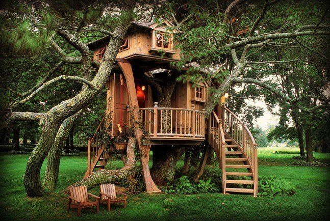 Would it not be amazing to have trees growing through your house?!
