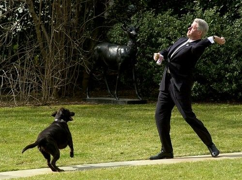 President Clinton throws the ball for his dog Buddy